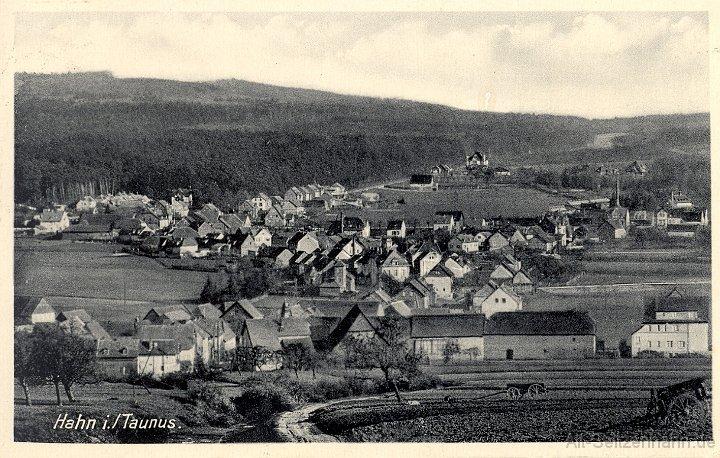 Tannenburg Hahn